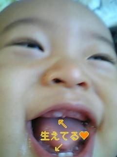 090807_181836_ed_m