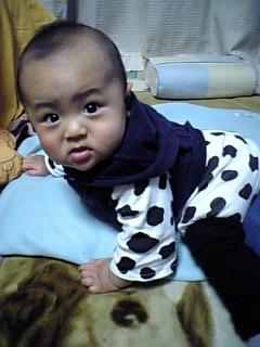 09年1月慶太7ヶ月